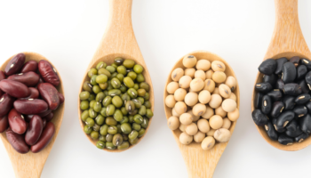 grãos e oleaginosas; produção de soja