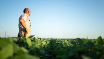 Agricultor-agronomo-agronegócio-campo-de-soja-fundos-de-investimentos